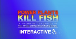 Power Plants Kill Fish Animation