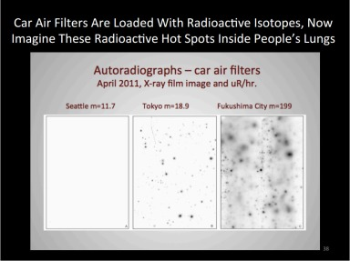 Car Air Filters Fukushima Radiation Fairewinds2013-06-04