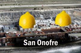 San Onofre Lemons